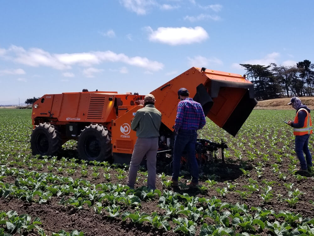 Growers looking at FarmWise robot in a cauliflower field