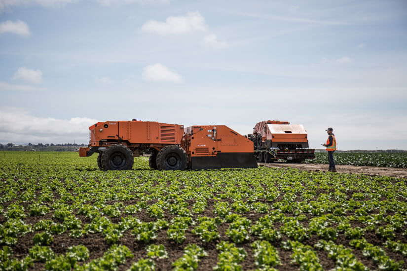 FarmWise employee operating a robot